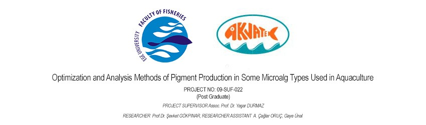 Read more about the article Optimization and Analysis Methods of Pigment Production in Some Microalg Types Used in Aquaculture