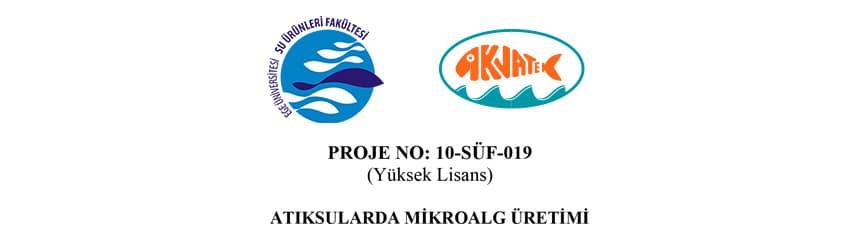 Read more about the article Atıksularda Mikroalg Üretimi